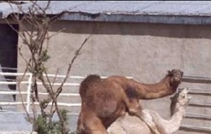 Guess what day it is!  Come on! You can say it!  SAY IT!!!