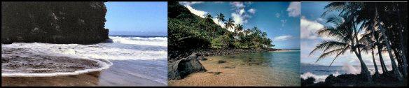 seacoast collage