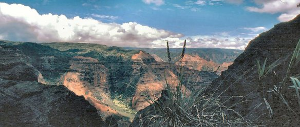 Waimea Canyon pan
