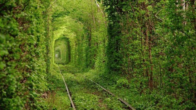 "Ukraine ""Tunnel of Love"""