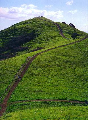 Trail_to_Red_Hill_Summit