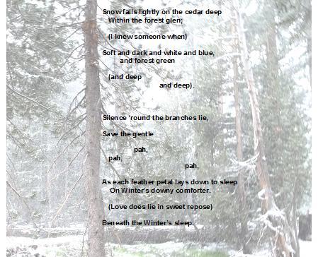 Snow falls lightly on the cedar deep c