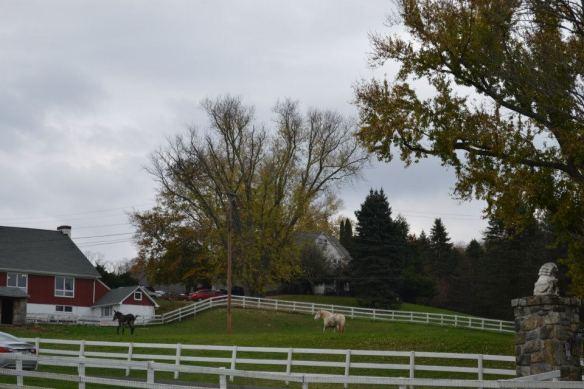 Tilly Foster Farm 2012