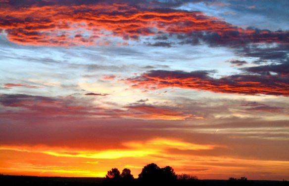 Sunrise 455