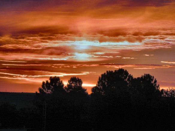 Sunrise 473