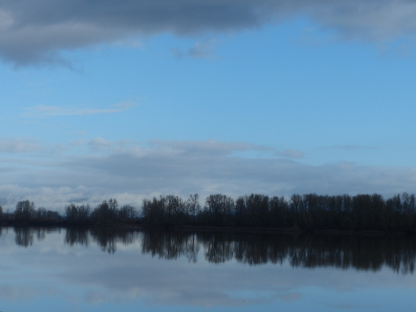 A quiet Christmas morning on the Columbia River, Sauvie Island
