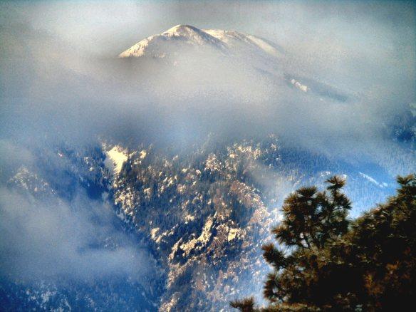 Mt St Charles 904