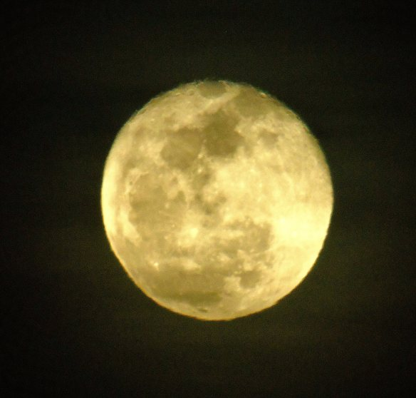 Rising moon 824