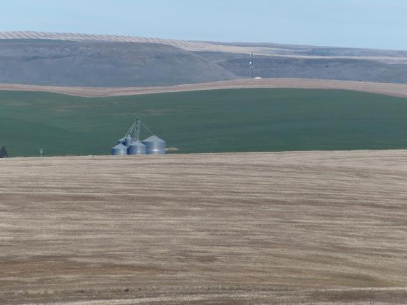 Fields, farm & hills