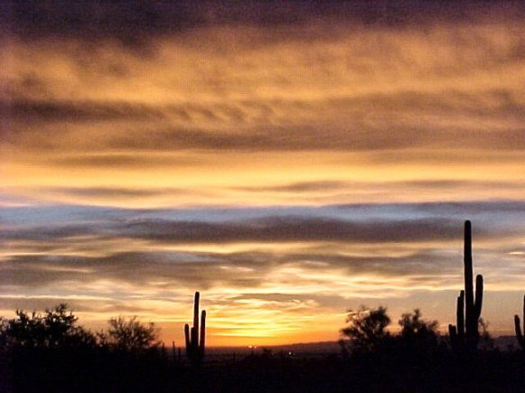 Dec 2005 desert sunrise