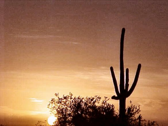 Nov 2001 Desert Sunset