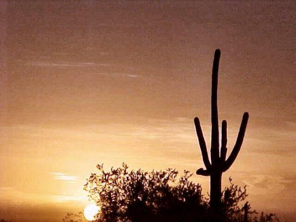 Nov 2001 Desert Sunset