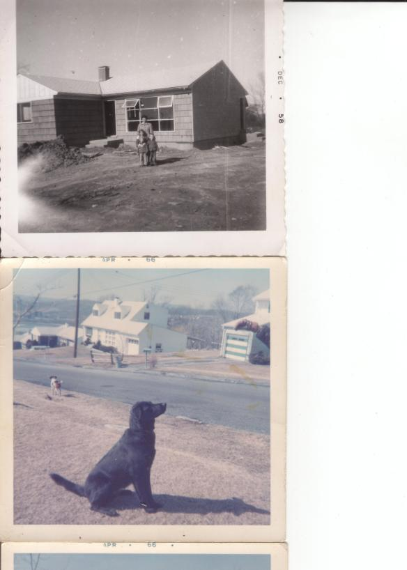 Top Photo: the Sechny 'homestead' ; Bottom: Laurie's dog Winnie