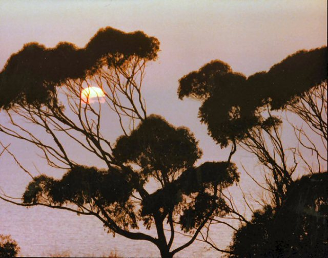 La Jolla Sunset ca 1978
