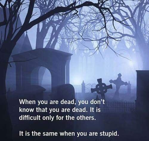 Dead v stupid