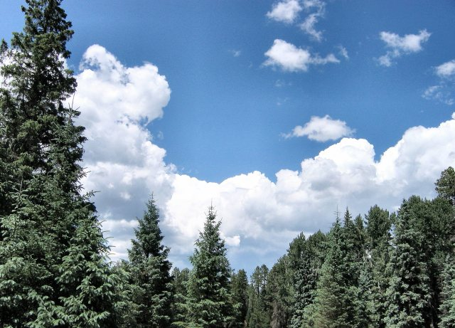 2007-july-apache-nf-from-butterfly-cienega-0336