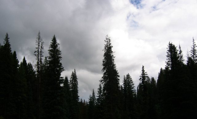 2007-july-apache-nf-from-butterfly-cienega-0435